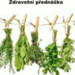 bylinky1